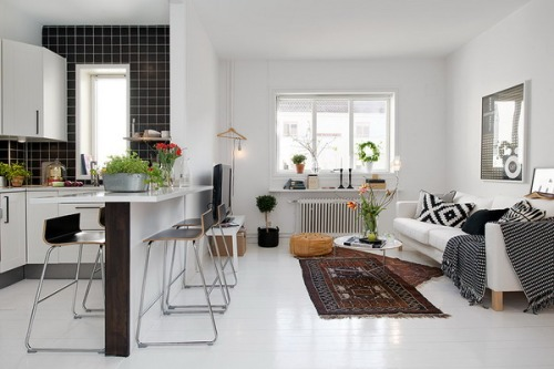 Comfortable-Small-Apartment-with-Living-Room
