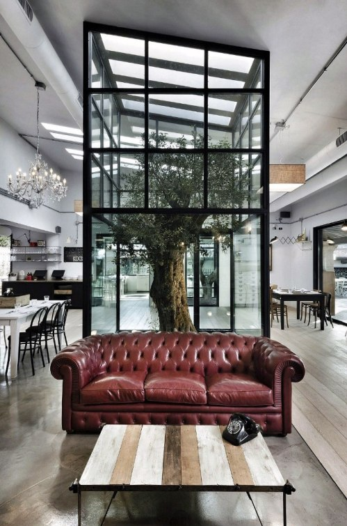 tree interiors